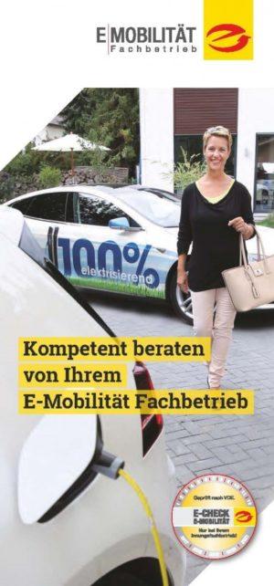 """Flyer """"E-Mobilität"""" 100 Stück"""